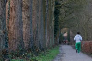 Joggen Wald